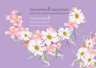 Cherry blossom and daisy flowers with leave and branch  for background card ,isolated pictures
