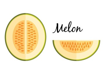 Galia melon in flat design isolated on white background