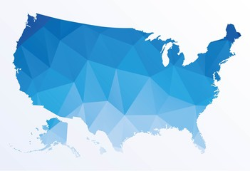 Polygonal map of Usa