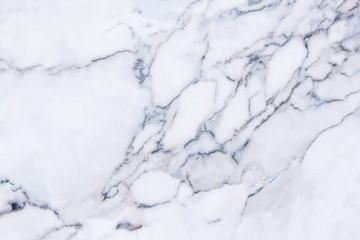White marble floor background.