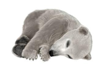 3D Rendering Polar Bear Cub on White