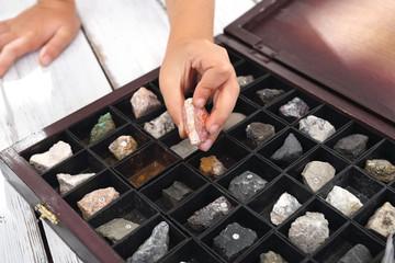 Skały i minerały. Kasetka minerałów, kolekcja kamieni.