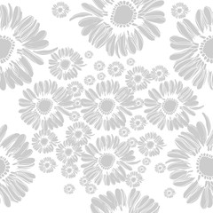 Floral seamless pattern with Chamomiles