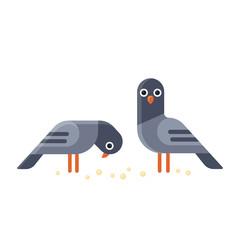 Cartoon pigeons illustration.