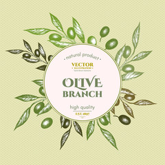Olive branch design template