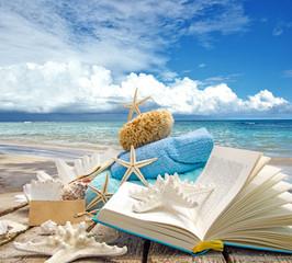 Glück, Entspannung, Ferien, Auszeit, Lesen: Traumurlaub an einem Karibischen Strand: Muscheln, Seesterne, Buch und Meer :)