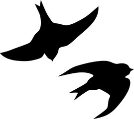 Silhouette of flying swallow