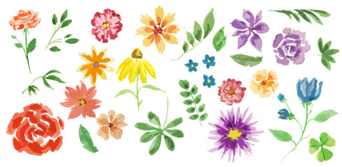 Watercolor flowers set. Elegant painterly flowers on white background for decoration, celebration and more. Summer flora.