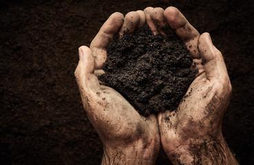 Soil in male hands
