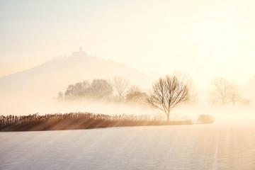 Winterstimmung am See
