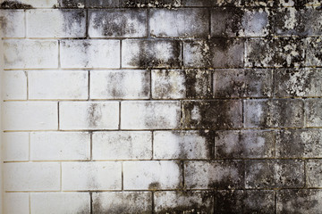 Surface brick grungy wall with cream tones for use as background