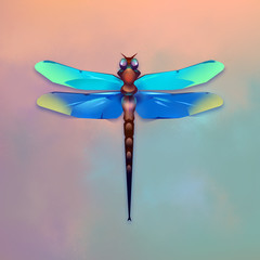 dragonfly on a colored background