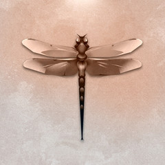 dragonfly old style