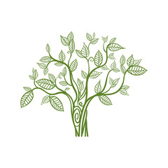 Nature and green concept represented by tree icon. Isolated and flat illustration