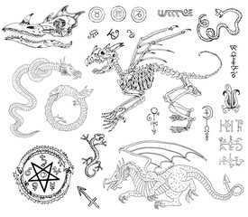 Graphic set with skeletons, dragons and mystic symbols