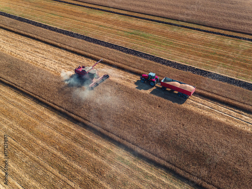 Wall mural Aerial view of combine on harvest field