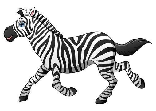 Happy zebra cartoon running