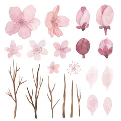 Set of flowers, leaves and branches