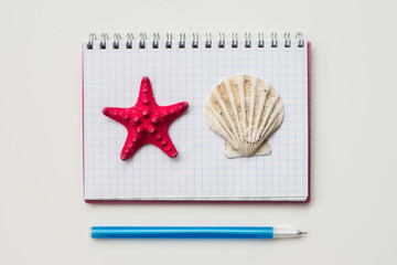 notepad, pen and shells isolated on a white background