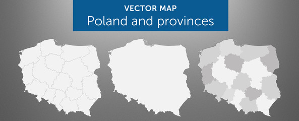 Vector map of country Poland and voivodeships vol.1
