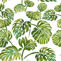 Jungle leaves on a white background. Tropical green Monstera.