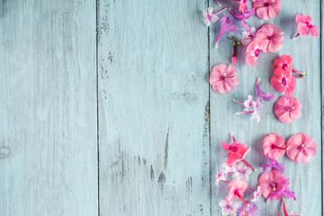 frame of flowers, background blue boards