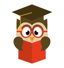 owl bird cute with hat graduation icon