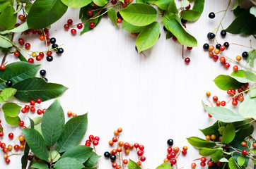 Frame of fresh green leaves and red berries on  wooden background. Template for your creativity, invitations, postcards, albums, etc.