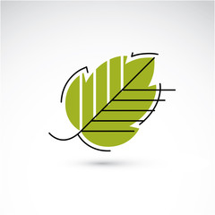 Spring hazel tree leaf, botany and eco flat image. Vector illust