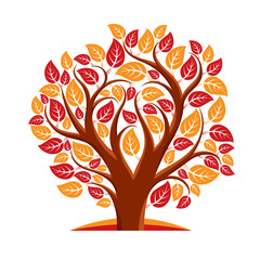 Vector illustration of autumn tree with branches in the shape of