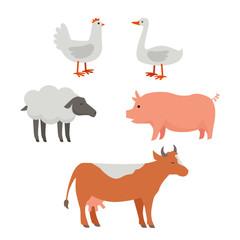 Set of Domestic Animals Flat Design Vector.