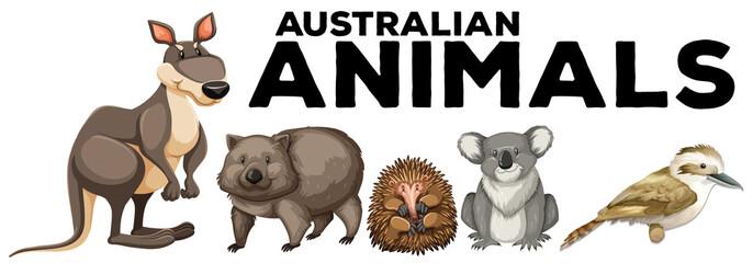 Wild animals from australia