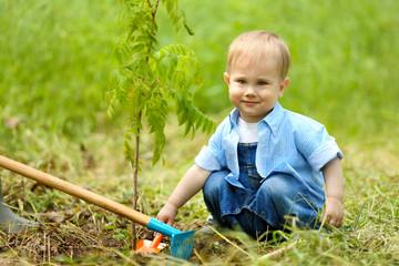 Cute baby boy planting tree in garden
