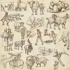 Cheese.Agriculture.Life of a farmer.Agricultural set.Collection of hand drawing illustrations.Pack of full sized hand drawn illustrations.Set of freehand sketches.Line art technique.Drawing on paper.