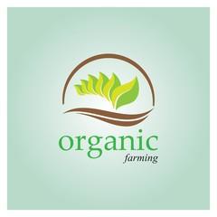 Green Organic farming logo design concept