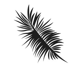 flat design palm tree leaf icon vector illustration