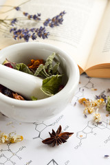 natural apothecary with herbs and book on science sheet