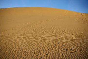 Sundown over desert landscape. Sand dunes