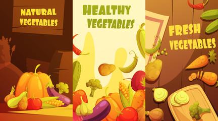 Organic Vegetables Vertical Banners Cartoon Poster