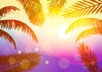 Vector illustration. Summer. The leaves of palm trees at sunset.