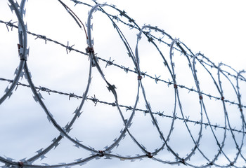 Coiled razor and barbed wire fence