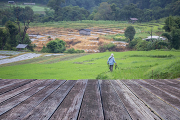 wooden floor and  Blured photographer on the  paddy rice farm