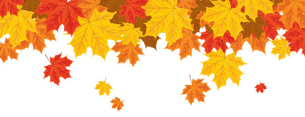 print with autumn leaves