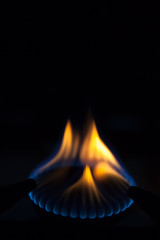 Gas burns on the burner on the stove in the dark. Selective focu