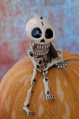 CLOSE-UP FUNNY SKELETON LAUGHING RISEN UP A PUMPKIN WITH BLUE MARBLE IN VERTICAL
