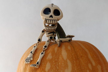 SPOTLIGHT A FUNNY LAUGHING SKELETON RISEN UP A PUMPKIN, ISOLATED ON WHITE BACKGROUND