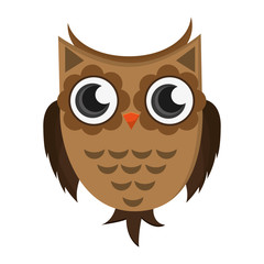 flat design owl cartoon icon vector illustration
