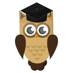 flat design owl cartoon with graduation cap icon vector illustration