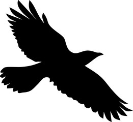 Silhouette of flying crow