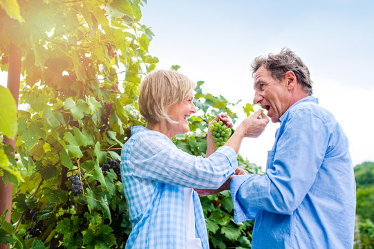 Senior couple in blue shirts eating green grapes
